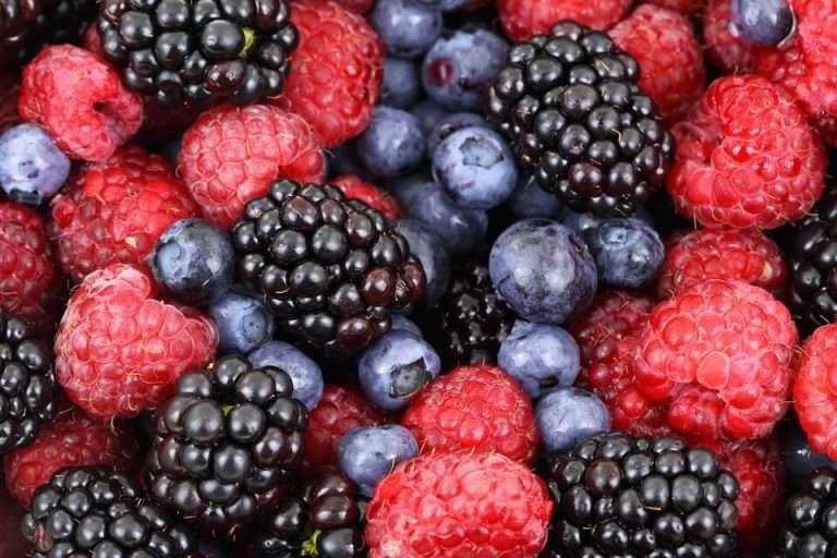Berries for burning fat