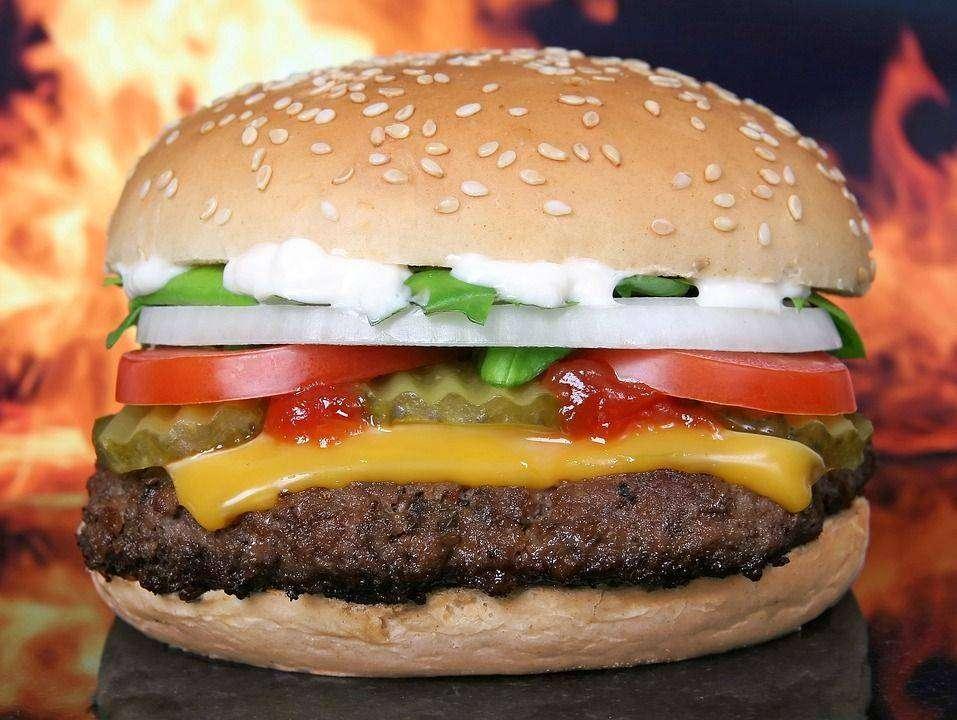 Hamburger - 20 Ultimate Dieting Secrets