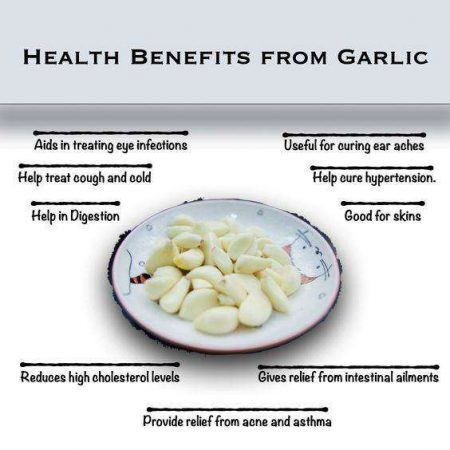 Garlic - Superfoods For Health & Immunity